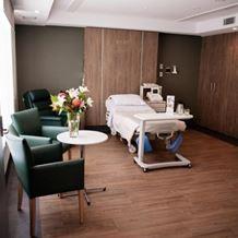Luxury birthing suites