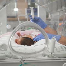 A new born baby is treated in a humidy crib